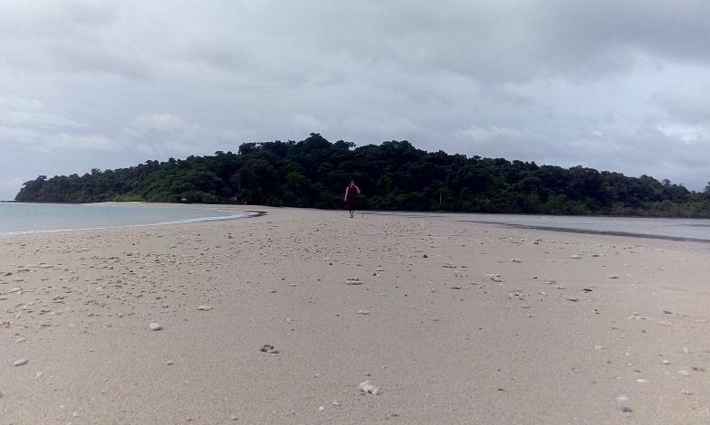 100% Pure Andaman
